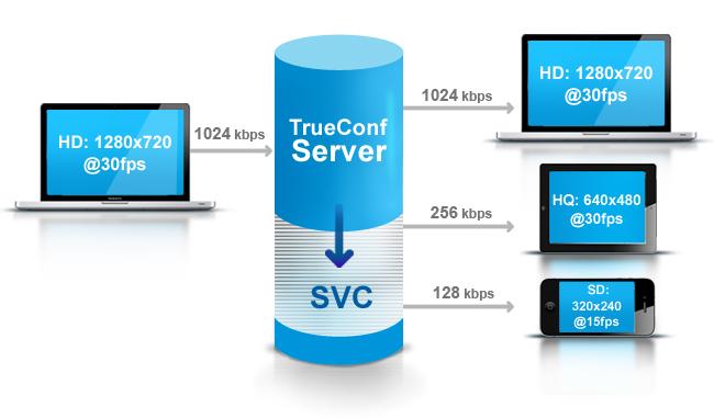 сервер видеоконференций торрент